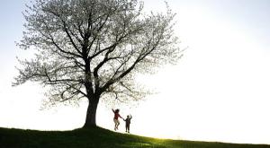 FAMILY COACH, FAMILY COACHING, FAMILY COACH SAN DIEGO